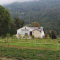 VALPOSCHIAVO, DALL'AGRICOLTURA BIOLOGICA ALLA DIETA ALPINA
