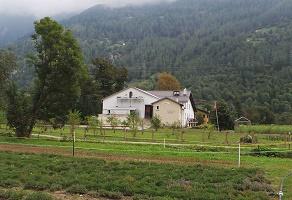 Azienda agricola Raselli,  erbe officinali e fiori, Poschiavo